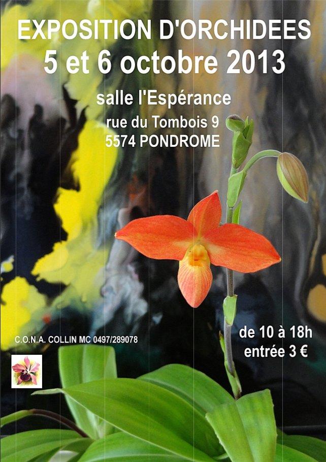 Une autre expo en Belgique / Pondrome, 5-6 octobre 2013 Expo-orchidees-pondrome-2013